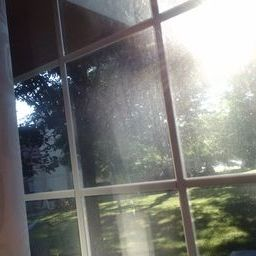 I don't see the sun here, or my dirty window, I just see his reassurance.. a comforting feeling indeed.