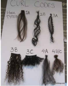 Yet another hair type chart found on Pinterest.